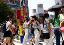 Ваш гид в Японии (8 фото)